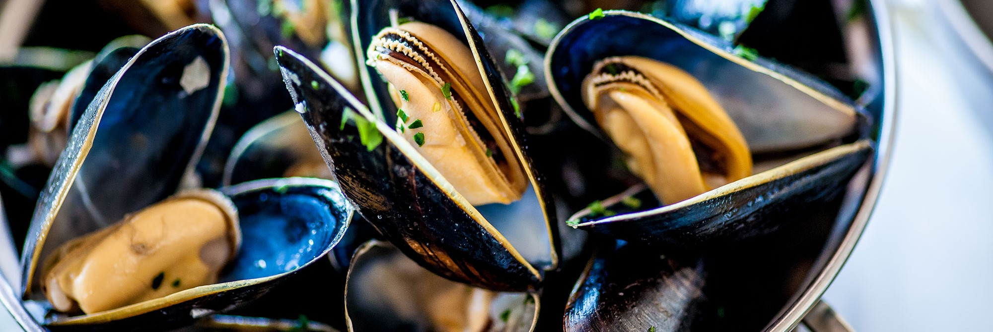 mussels-2